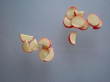リンゴ1.JPG